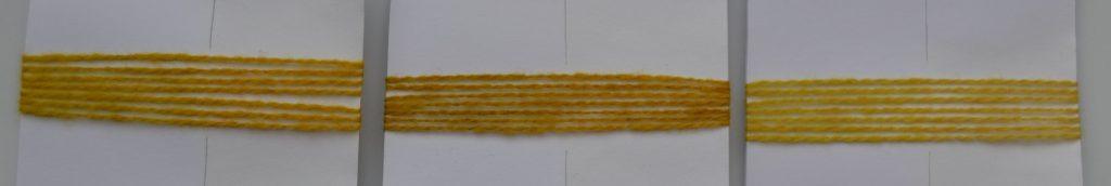 reedflowerslighttest